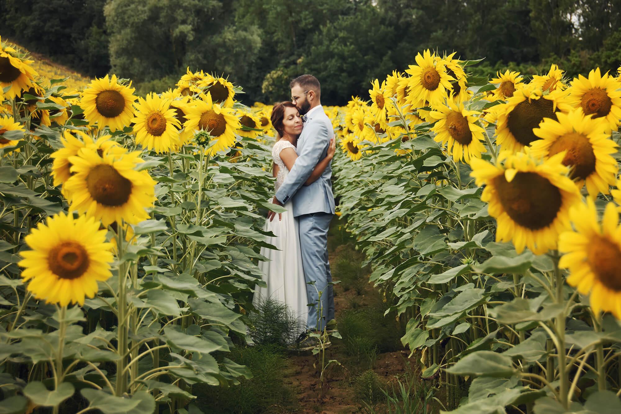 mariage aude toulouse haute-garonne